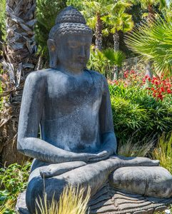 serene buddha at wellness retreat